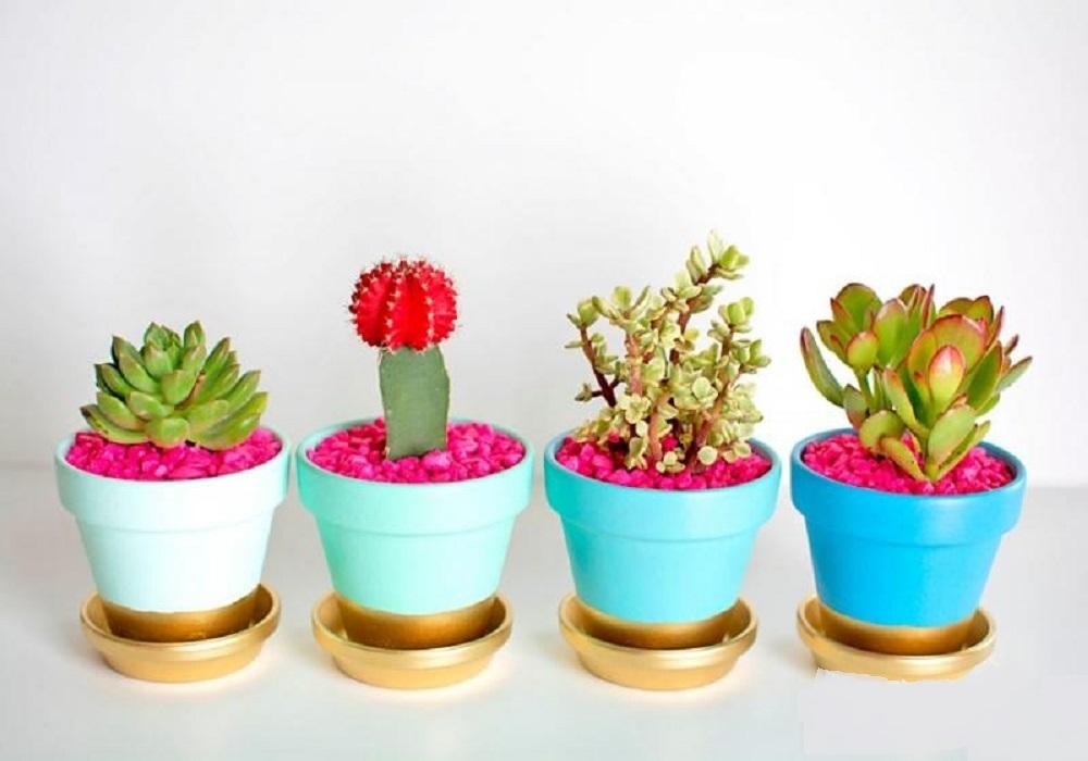 فروش ویژه انواع گلدان